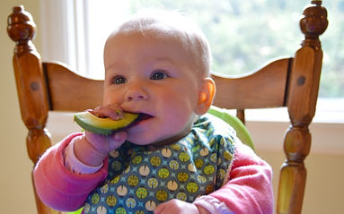 avocado - 1.jpg