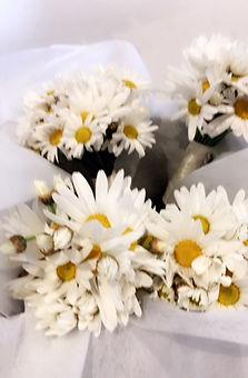 daisy bouquets.JPG