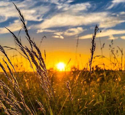 summer-sunset_edited.jpg