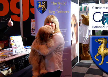 Sue Chairwoman Guild of Dog Trainers