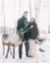 reindeer wedding.jpg