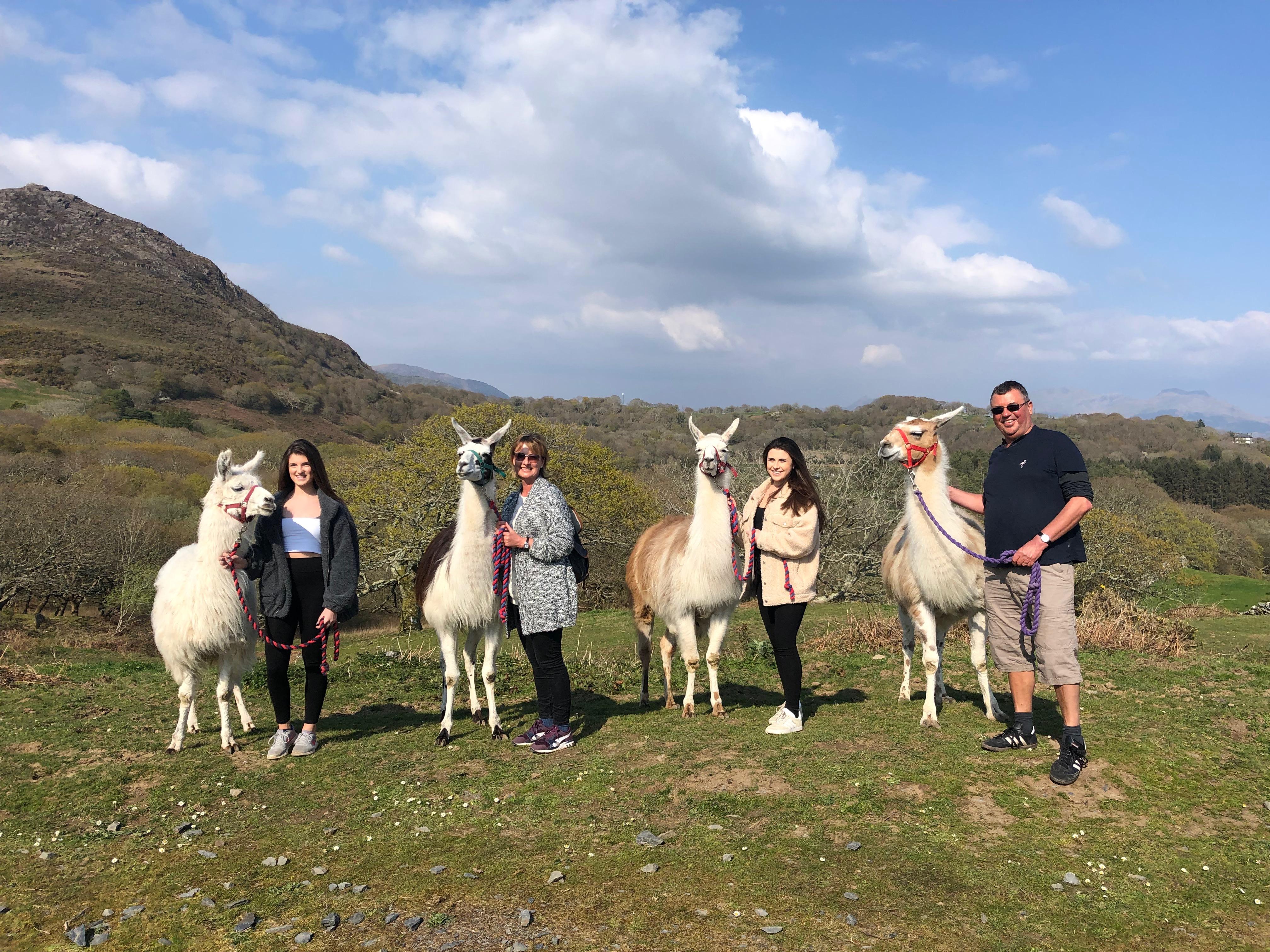 Snowdonia Activities