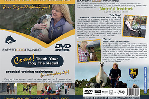 DVD- Come- Teach Your Dog A Recall with Sue Williams
