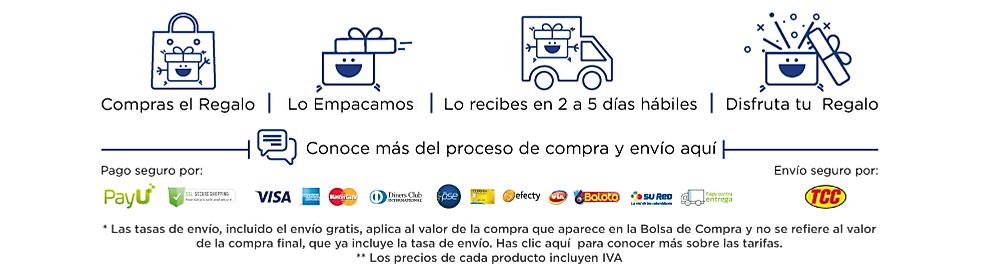 Infografía proceso de envío y precios