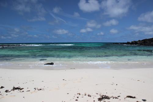 White north east beach