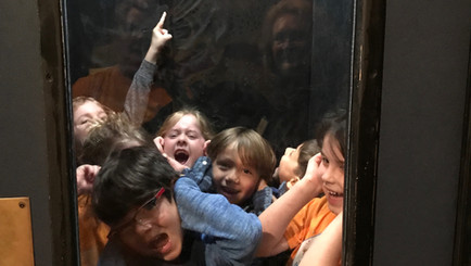 Grades 1-4 Field Trip to The Houston Health Museum