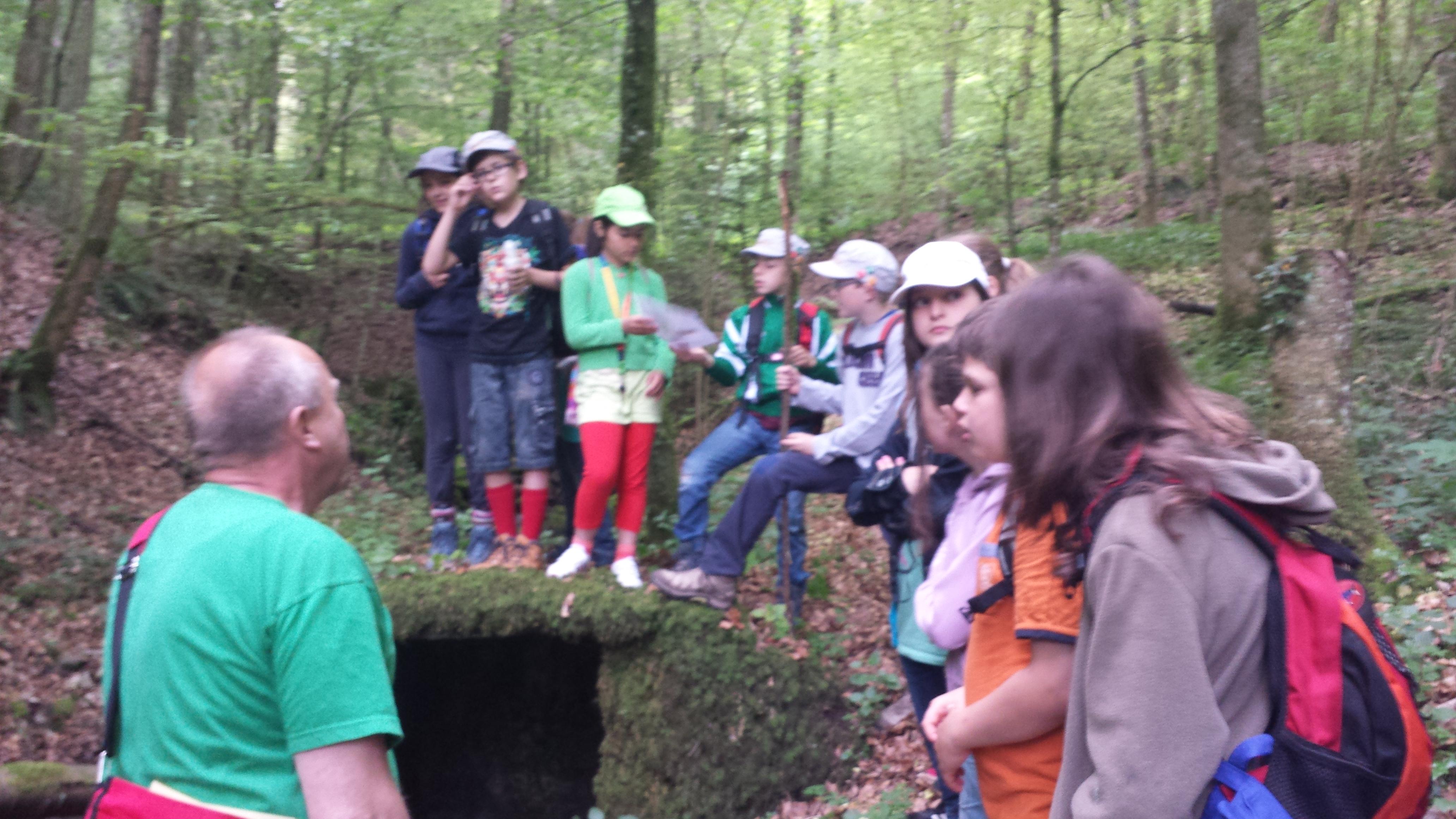 Wald- und Umwelttag