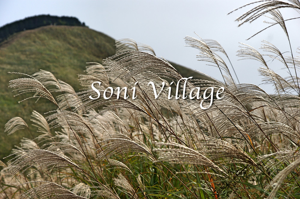 Nara Visitor Center & Inn Soni Highlands