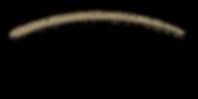 NEW - CC Point Logo transparent backgrou