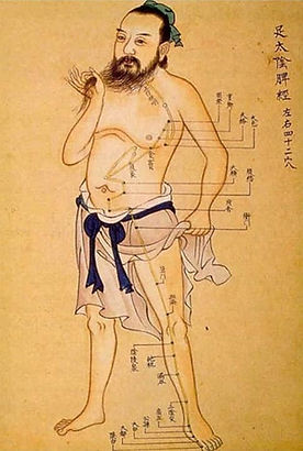 sn-acupuncture1.jpg