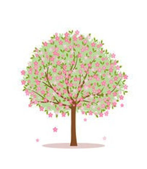 Blossom%20Tree%2014th%20may_edited.jpg