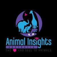Animal Insights Australia.jpg