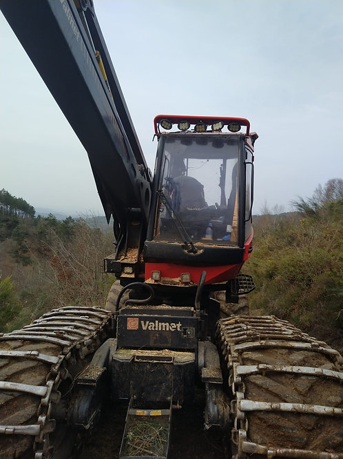 Valmet 901.4 - Waratah H414