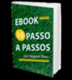 E-BOOK PASTAGEM WAGNER PIRES.png