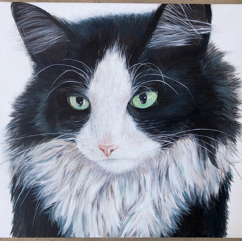 Custom Cat Painting/ Pet Portrait