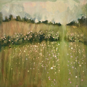 Hedgerows and meadows