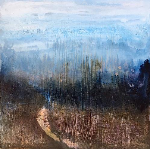 Morning light, walks Ashdown Forest, misty mornings, Greenfinche, Ticehurst, early sunlight, morning mist