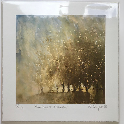 Weather painting, golden light, Sunshine, hedgerows, tree painting, Shower, gift from sussex