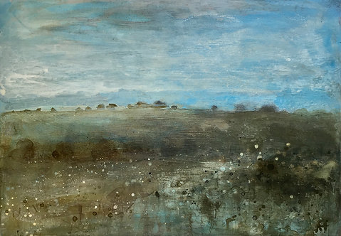 Blue sky rain soaked meadows and hedgerows