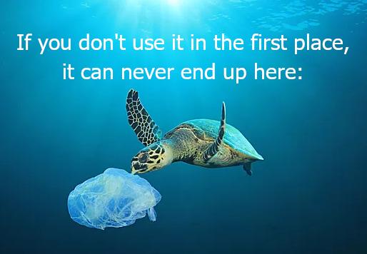 Rethink Plastic Bags!