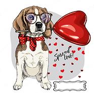 iman-beagle.PNG