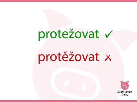 protezovat.jpg