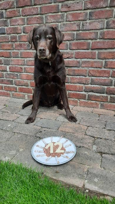 Sam feiert seinen 12. Geburtstag!!!!
