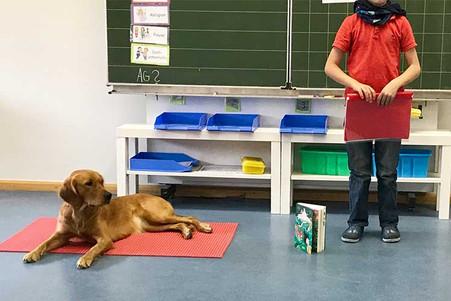 friedlies-trifft-schulhund-ella3.jpg