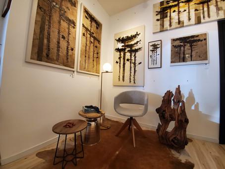 """""""Araucárias"""" a nova exposição em cartaz na Galeria Arte12b"""