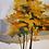 Thumbnail: Outono luzente - I