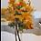 Thumbnail: Outono luzente - II