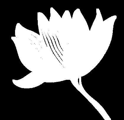 lotuspng.png