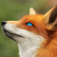 ___blue_eyes____by_0l_fox_l0-dbbzsl5.jpg
