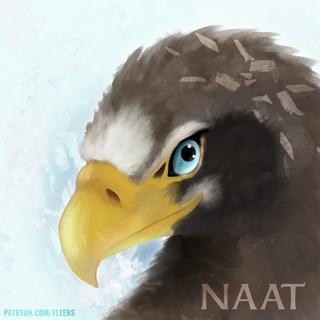 NAAT_JAN.png