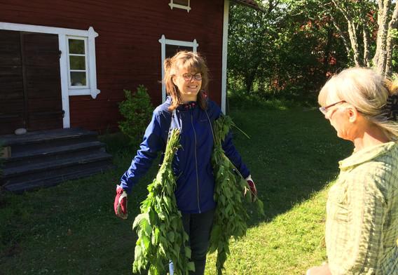 Récolte des orties