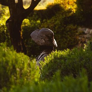 Jardins des Songes - Entretien de jardins