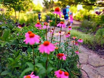 flowers-with-blur-effect.jpg