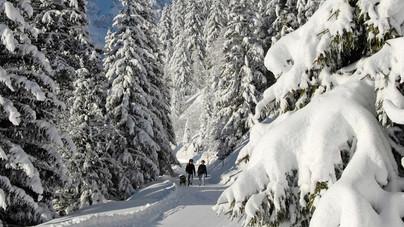 Winterspaziergang Engelberg