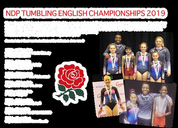 2019 - TUM English Champs NDP .png