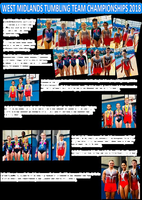 2018 - TUM WM Team Championships .png