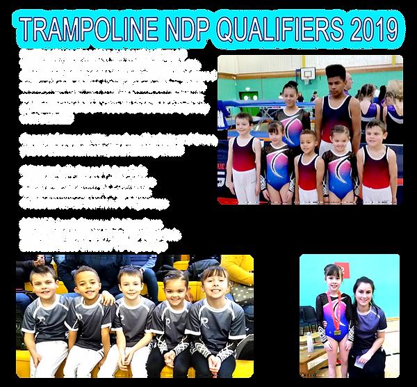 2019 - TRA NDP Qualifier Dec 2019.png