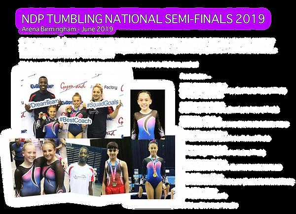 2019 - NDP Semi Finals.png