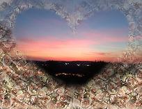 Sunset Heart Flowers copy.jpg