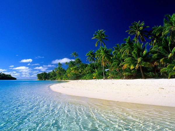 Reparto tropical