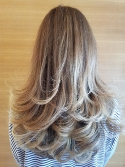 Color, cut, and style