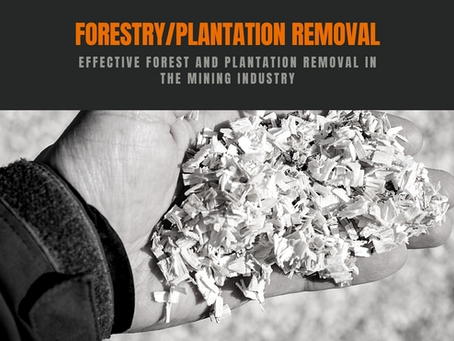 Effective Forest and Plantation Removal in the Mining Industry