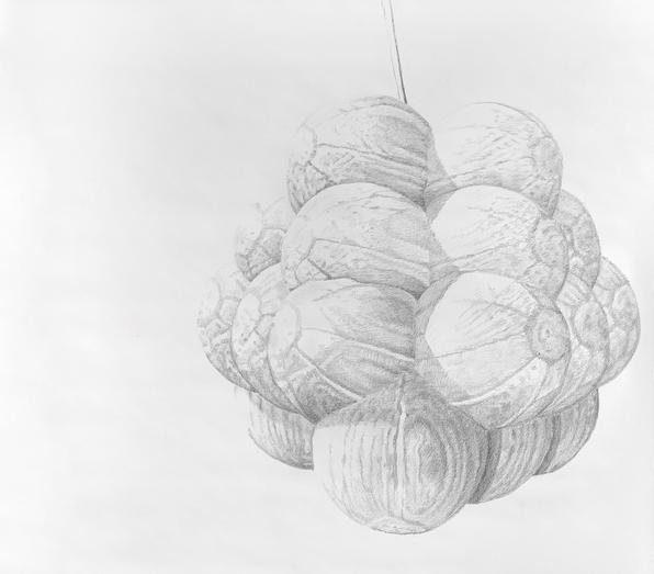 Oppotunity landing (detail), 2020, pencil on paper, 360/150 cm.