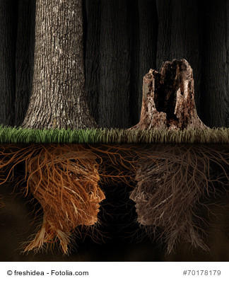 Two faces made of tree roots communicating to each other