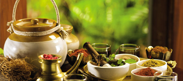 Ayurveda & SPA tours and travel packages in Kerala