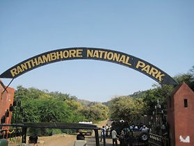 Ranthambore Safari's and travel packages